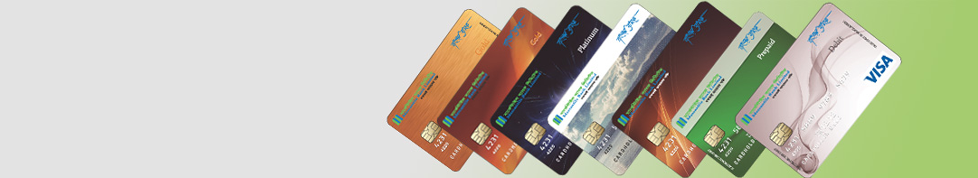 Fees & Charges for Visa Cards